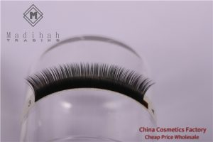 Private Label Individual Eyelash Extensions